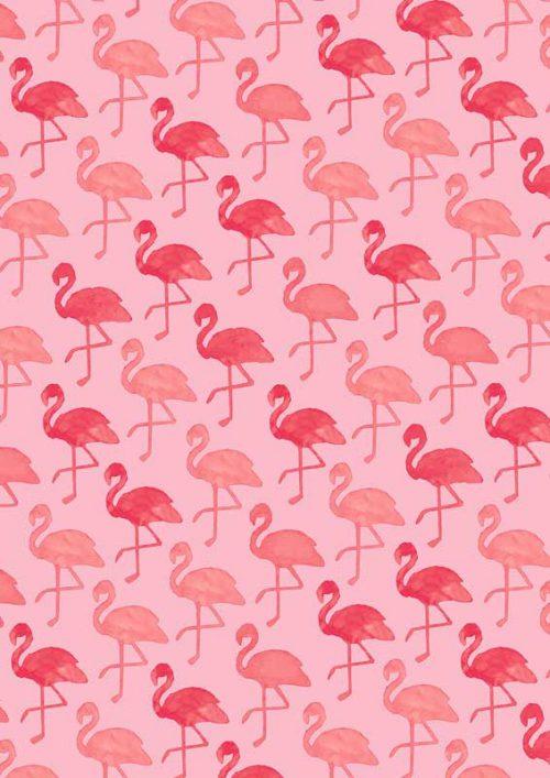 K601695-3—Flamingo-Pink